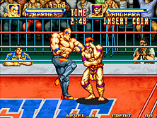 Thumb image for 3 Count Bout / Fire Suplex mame emulator game