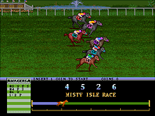 Thumb image for Arlington Horse Racing (v1.21-D) mame emulator game