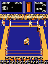 Thumb image for Tag Team Wrestling mame emulator game