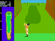 Thumb image for Competition Golf Final Round (old version) mame emulator game