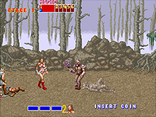 Thumb image for Golden Axe (bootleg, encrypted) mame emulator game