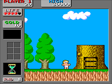 Thumb image for Wonder Boy in Monster Land (Japan not encrypted) mame emulator game