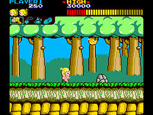 Thumb image for Wonder Boy (315-5162, 4-D Warriors Conversion) mame emulator game
